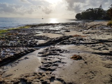 Collingwood Beach